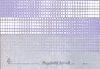 Obrazec blagajniški dnevnik (6300 B), 2 kosa