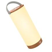 Prenosna LED svetilka TaoTronics DL23