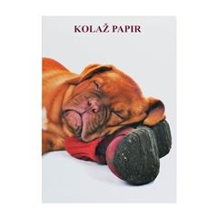 Kolaž papir Elisa, kuža s čevljem, 20 listov