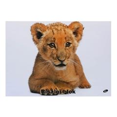 Risalni blok A3, 20 listni, 140 g, Baby levček