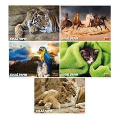 Kolaž papir Target, Animal, 20 listov