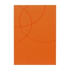 Dnevnik Sport, oranžen