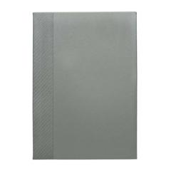 Dnevnik Dolores, srebrn