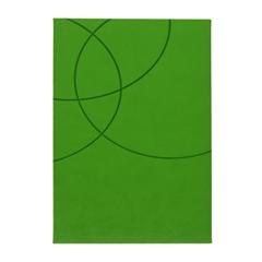Dnevnik Sport, svetlo zelen