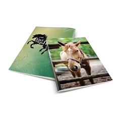 Zvezek A4 Rucksack Only, Konj 1, karo, 52 listov