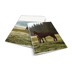 Zvezek A4 Rucksack Only, Konj 3, visoki karo, 52 listov