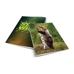 Zvezek A4 Rucksack Only, Medved 2, brezčrtni, 52 listov